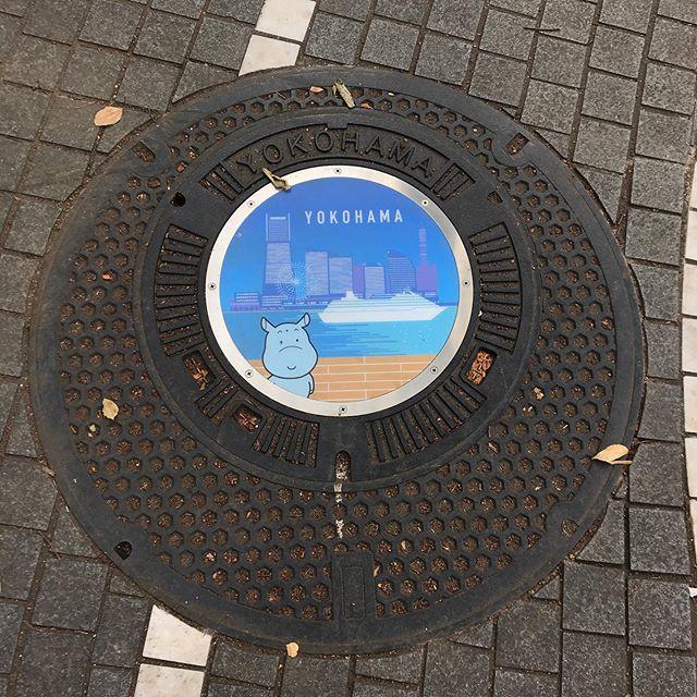 横浜市 かばのだいちゃんマンホール #manhole #manholejp
