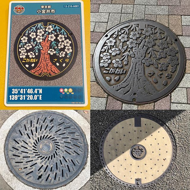小金井市のマンホール #manhole #manholejp #人孔蓋